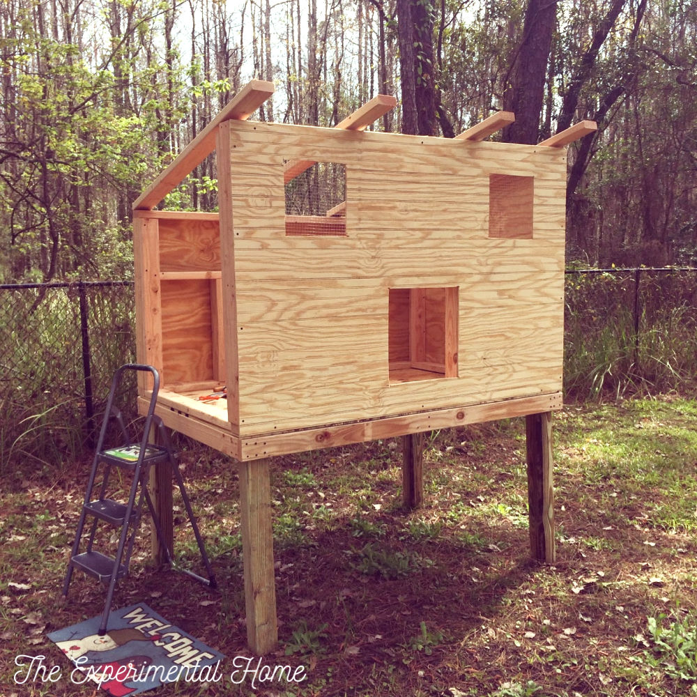 Chicken Coop With Run Construction