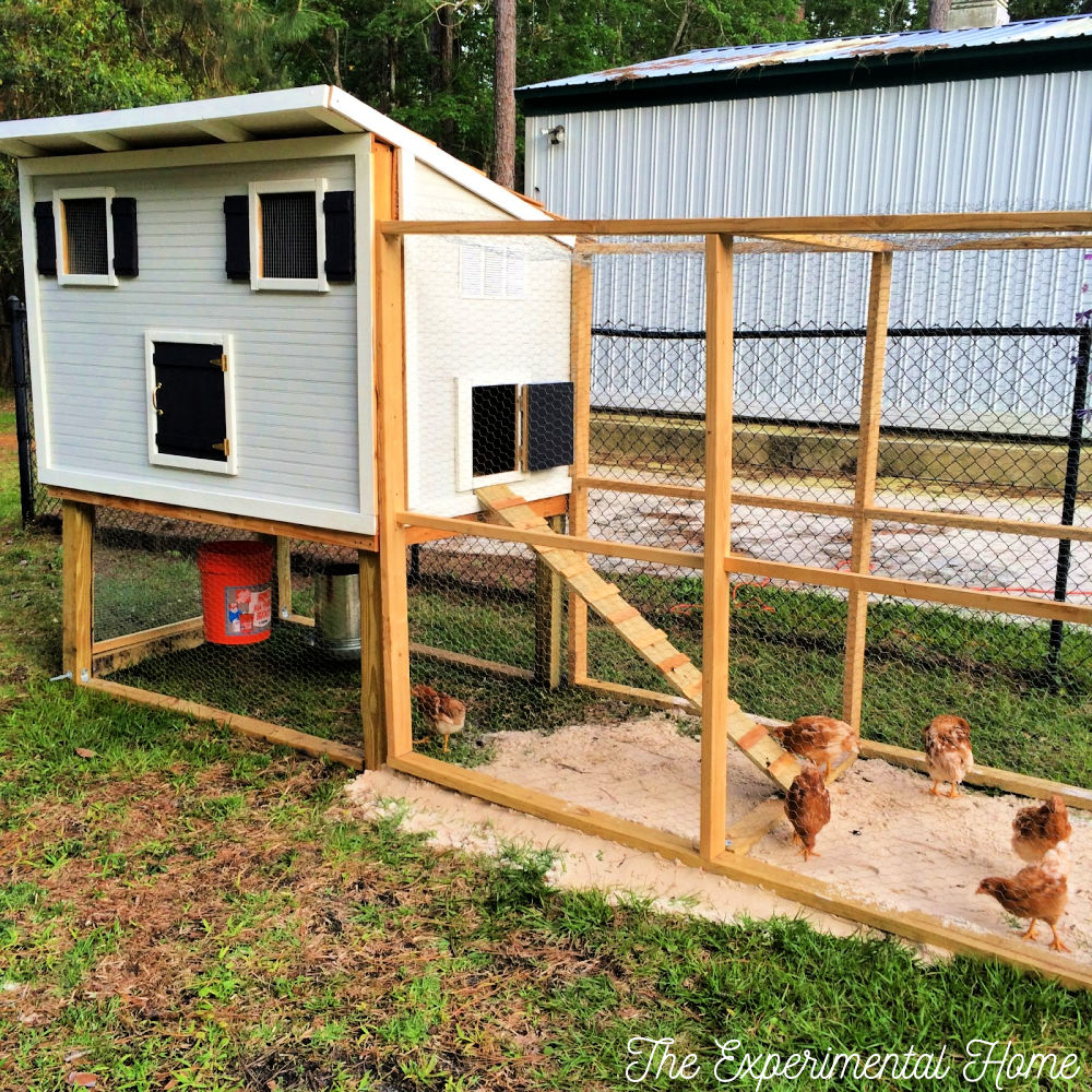 How To Build A Chicken Coop With Run