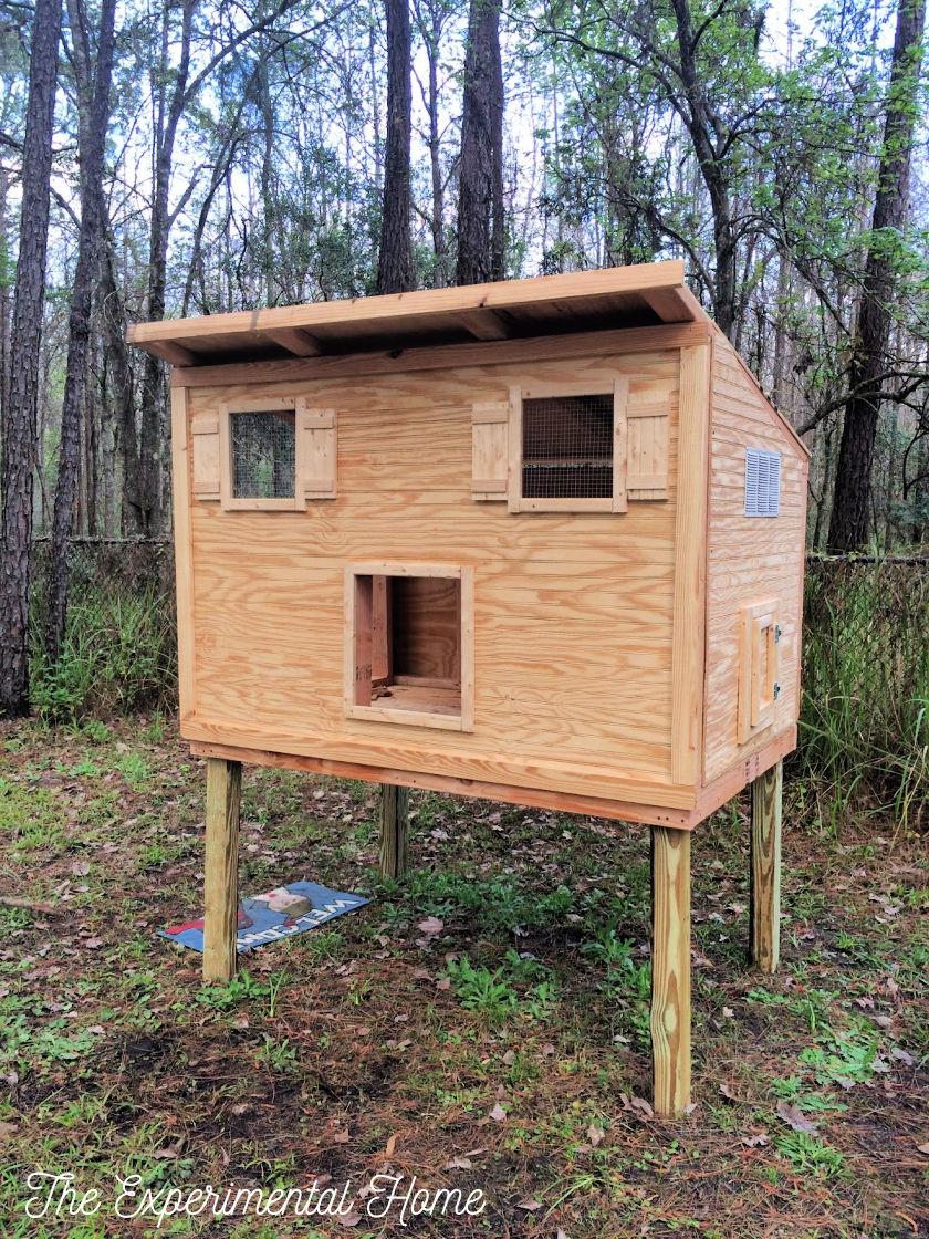 How To Build A Chicken Coop still Inprogress for run