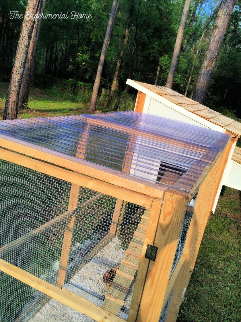chicken coop roof top